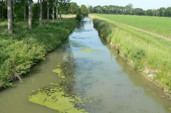 Irrigation : premières mesures de restriction