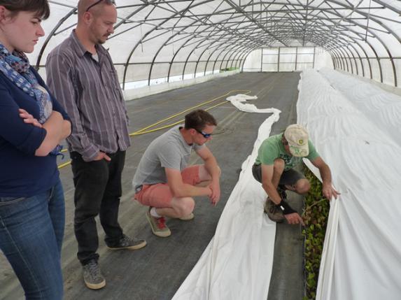 ADEMA : un pied en agriculture pour 5 participants