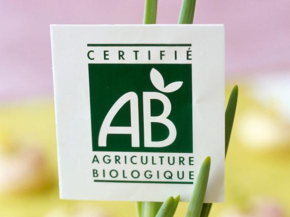 Bio 2022 : restons ambitieux !