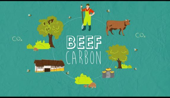 Filières viande [vidéo] : comprendre le programe Beef Carbon
