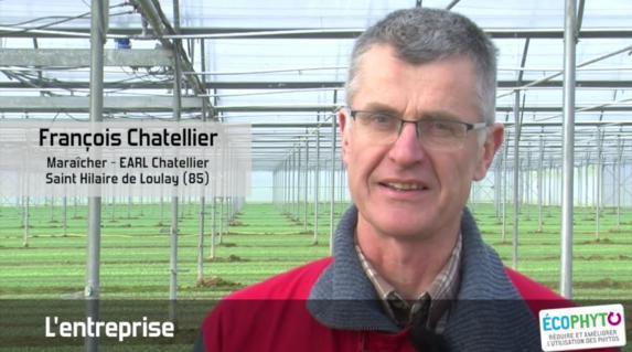Maraîchage [vidéo]:  phytosanitaires 'traiter en préservant sa santé'