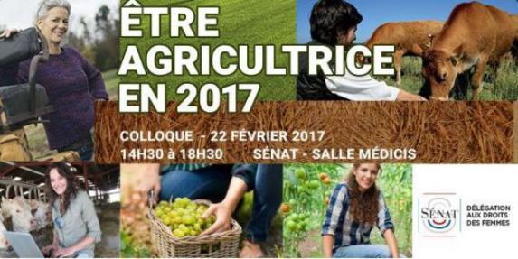 Social : le Sénat engage un « travail de fond » en faveur des agricultrices