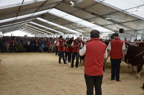 Festi'élevage [retour en images] : clap de fin pour la 23e édition