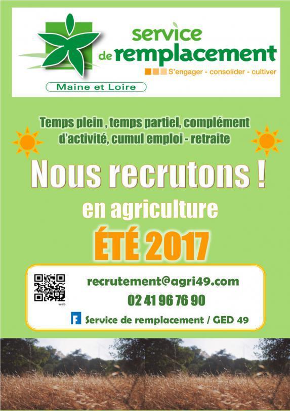 Service de Remplacement Maine et Loire: on recrute cet été, vous connaissez quelqu'un ?