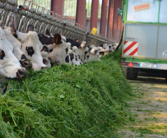 Emploi : L'agriculture au quotidien dans la presse locale !