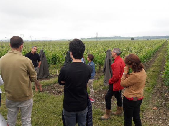 Emploi : Un guide pour mieux orienter sur les parcours en agriculture !