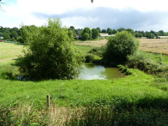 Environnement : ZNT auprès des fossés et points d'eau