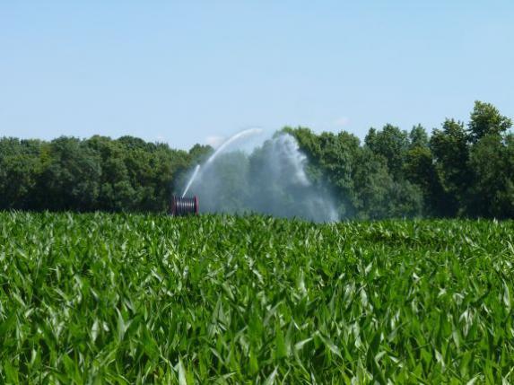 Irrigation : mesures de restriction