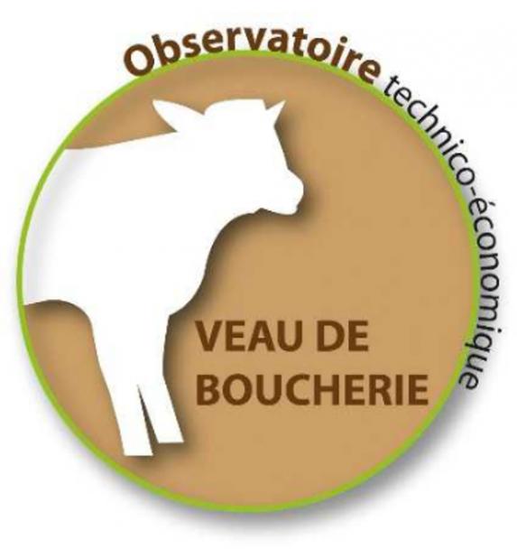Restitution observatoire veaux de boucherie