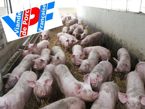 Porcs : La section porcine de la FRSEA a rencontré l'entreprise Fleury Michon