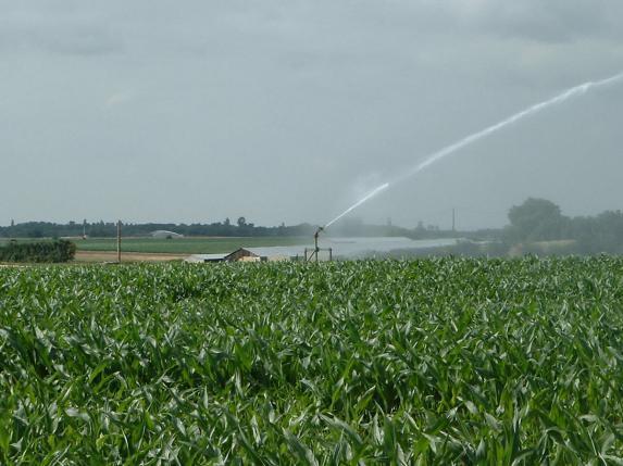 Irrigation - La FNSEA demande à N. Hulot de « sortir du tabou »