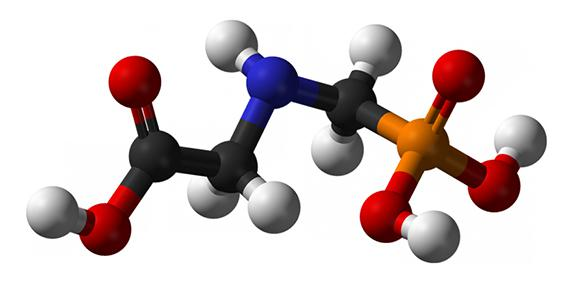 Glyphosate : la FNSEA dénonce la 'pétaudière'