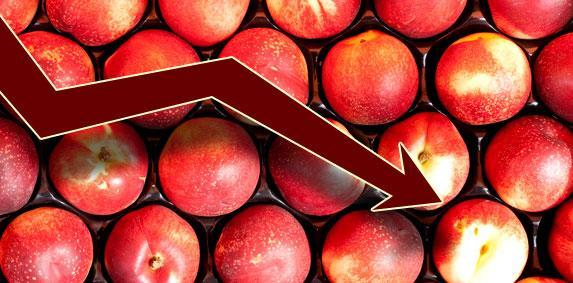 Fruits d'été - FNSEA, JA et FNPF demandent un soutien immédiat à la production