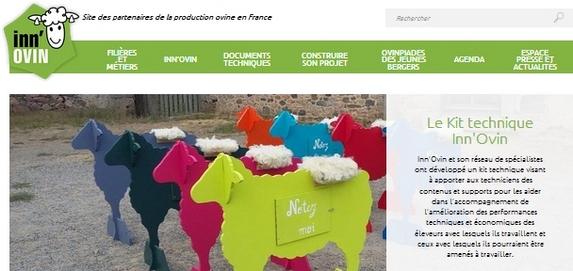 Ovins : Le nouveau site internet 'Inn'Ovin' dédié à toute une filière